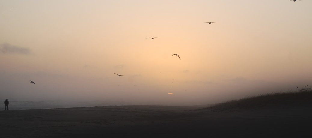 Tetenal Sunset
